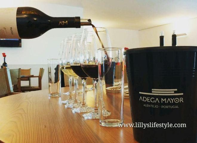 dove fare degustazione vini portoghesi