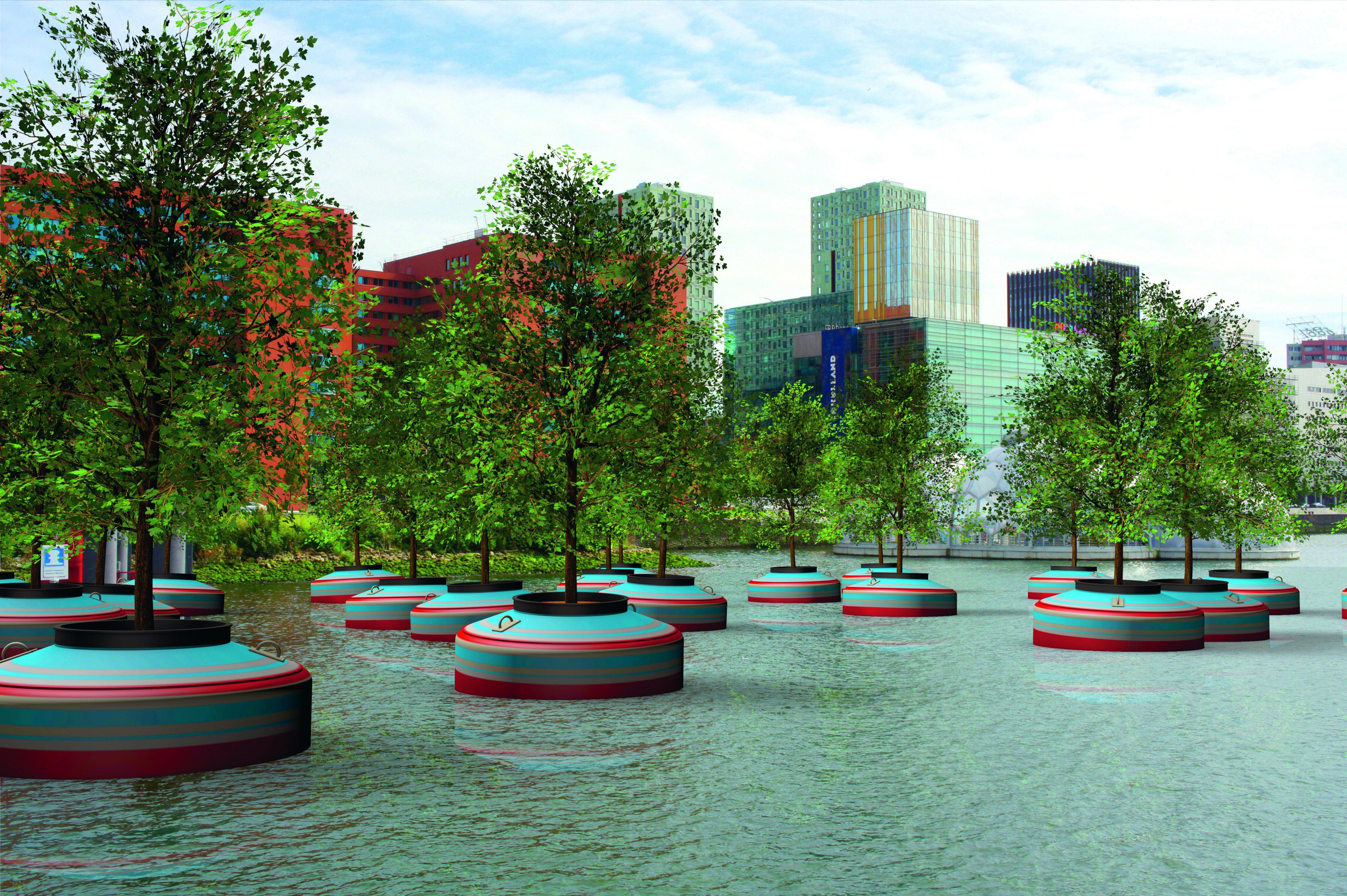 La foresta galleggiante di Rotterdam