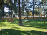 parco cani