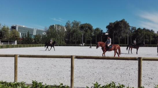 centro equitazione lisbona