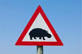 mozambico segnale stradale ippopotamo