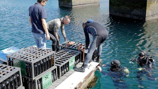 portogallo vino sottomarino