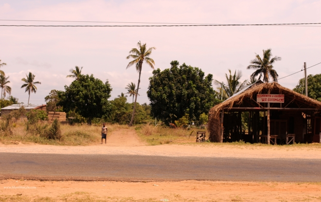 guidare in mozambico