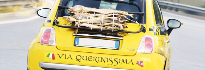 """progetto """"Via Querinissima"""""""